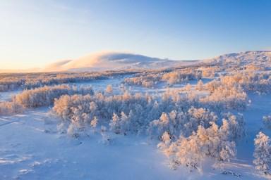 snö fjäll